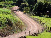 O Governo do Paraná, por meio da Secretaria da Agricultura e do Abastecimento, está liberando R$ 13,2 milhões em recursos do Tesouro do Estado para atender demandas de produtores rurais.  Foto: Divulgação