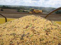 Paraná deverá colher 35,9 milhões de toneladas no ano agrícola 2015/16