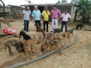 vereadores acompanhavam situação dos cachorros de rua desde 2013