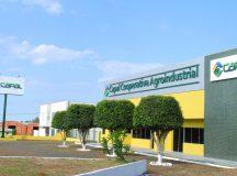 Cooperativa Capal abre nova filial em Ibaiti