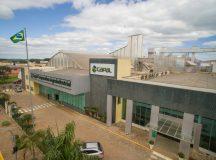 Capal : Crescimento de 32% foi um dos maiores do Paraná