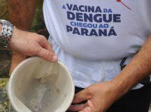 Epidemia de dengue alcança mais cinco cidades do Paraná