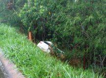 Prefeito de Japira morre em acidente de trânsito na BR-153