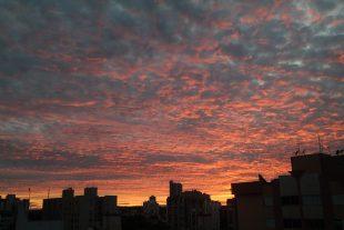 Foto: Maria Eliane Lago da Costa