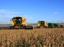 Paraná quer mais recursos e queda de juros no novo Plano Agrícola