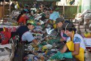 Lixo reciclável vira alimento na mesa do cidadão e oportunidade nas mãos dos catadores