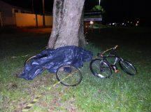 O adolescente morto pelo raio se abrigava embaixo da árvore com sua bicicleta. Foto: Folha Paranaense