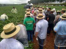 CAPAL realiza Tec Campo em dois municípios em março